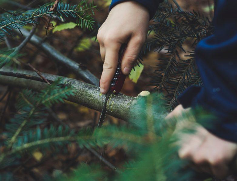 scie pour le bushcraft chaine archet nature