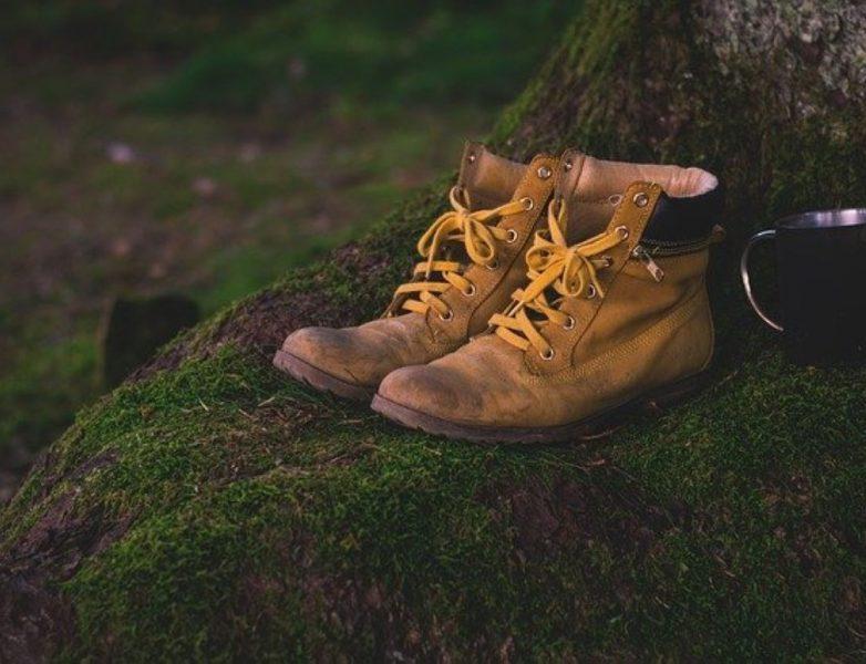 image illustrant des chaussures de trail
